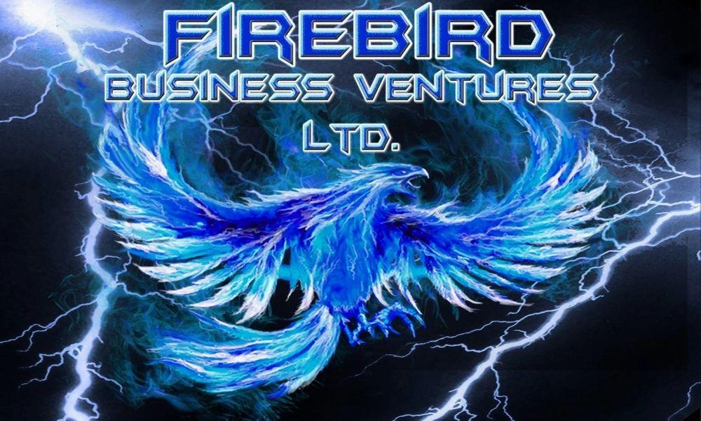 Firebird Business Ventures Ltd. Logo of blue phoenix
